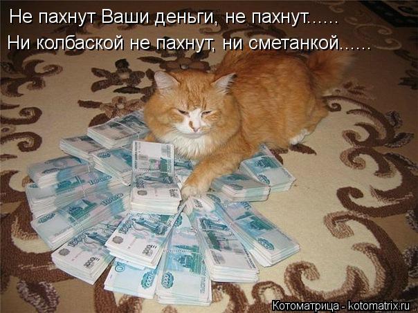Котоматрица: Не пахнут Ваши деньги, не пахнут...... Ни колбаской не пахнут, ни сметанкой......