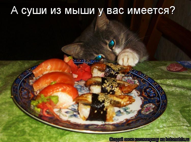 Котоматрица: А суши из мыши у вас имеется?
