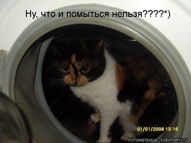Котоматрица: Ну, что и помыться нельзя????*)