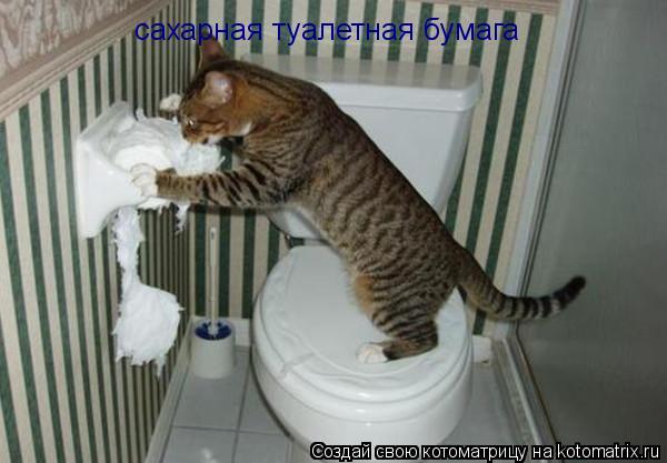 Котоматрица: сахарная туалетная бумага