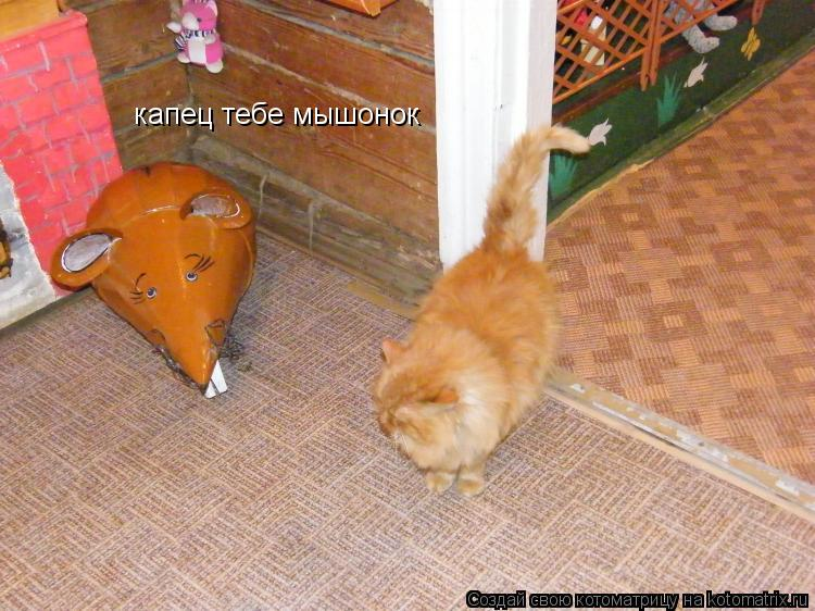 Котоматрица: капец тебе мышонок