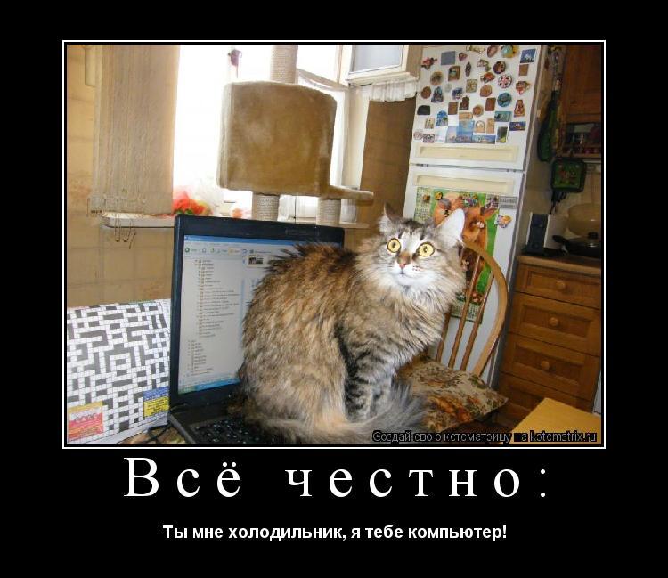 Котоматрица: Всё честно: Ты мне холодильник, я тебе компьютер!