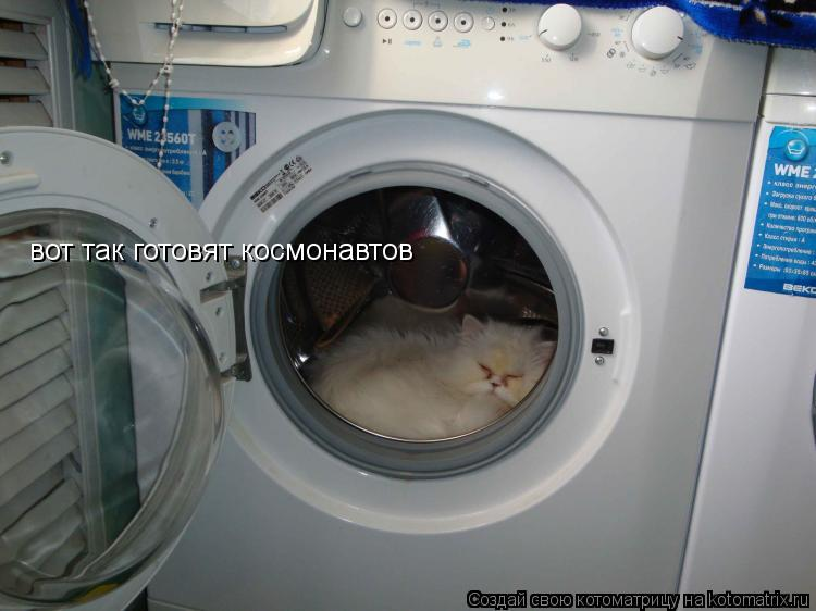 Котоматрица: вот так готовят космонавтов