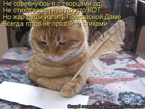 Котоматрица: Не соревнуюсь я с творцами од, Не стихотворец я, а просто КОТ. Но жар души излить Прекрасной Даме Всегда готов не прозой, а стихами.