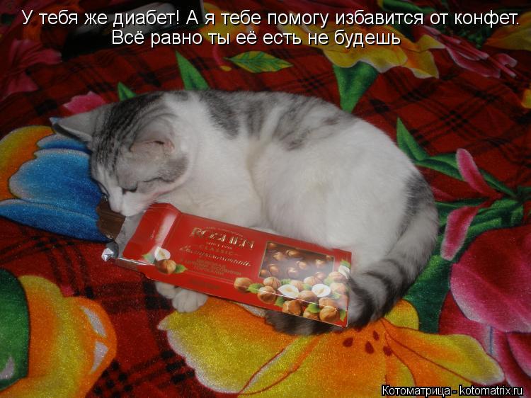 Котоматрица: У тебя же диабет! А я тебе помогу избавится от конфет. Всё равно ты её есть не будешь