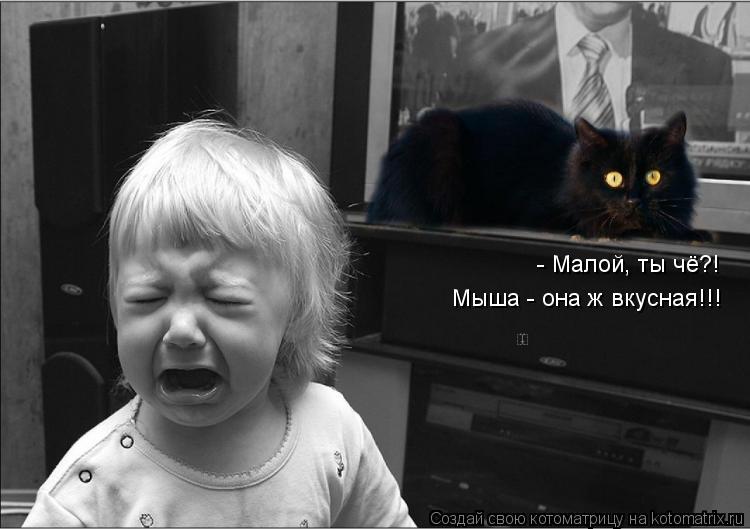 Котоматрица: - Малой, ты чё?!  Мыша - она ж вкусная!!!
