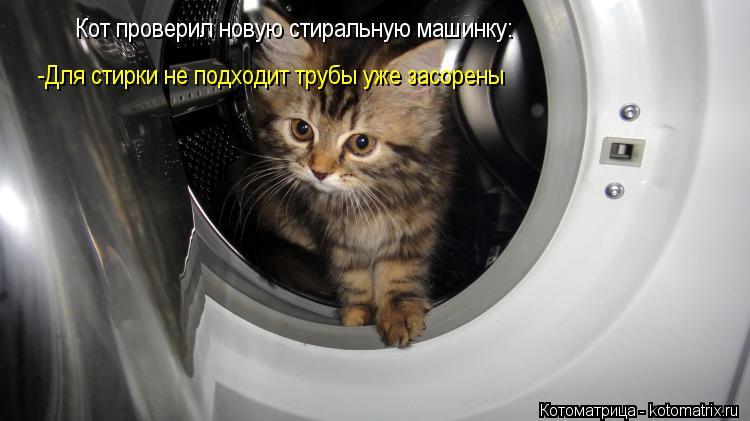 Котоматрица: Кот проверил новую стиральную машинку: -Для стирки не подходит трубы уже засорены