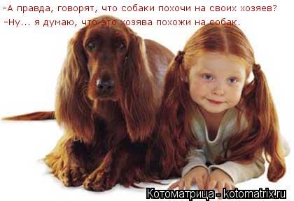 Котоматрица: -А правда, говорят, что собаки похочи на своих хозяев? -Ну... я думаю, что это хозява похожи на собак.