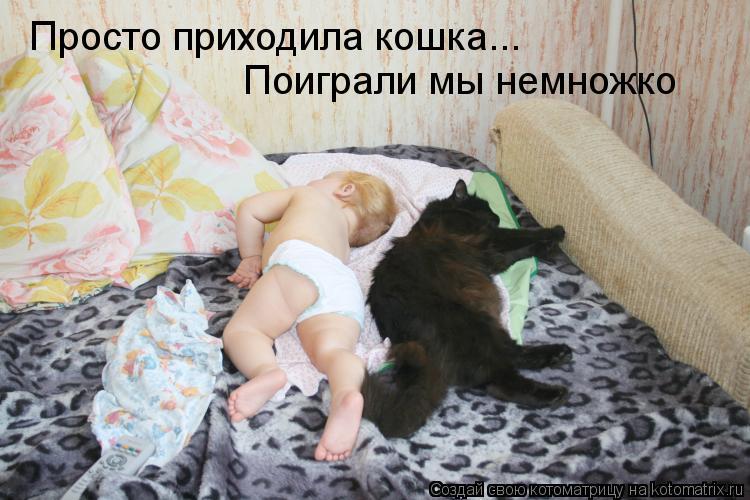 Котоматрица: Просто приходила кошка... Поиграли мы немножко