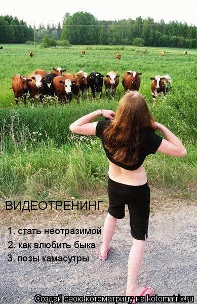 Котоматрица: ВИДЕОТРЕНИНГ 2. как влюбить быка 1. стать неотразимой 3. позы камасутры