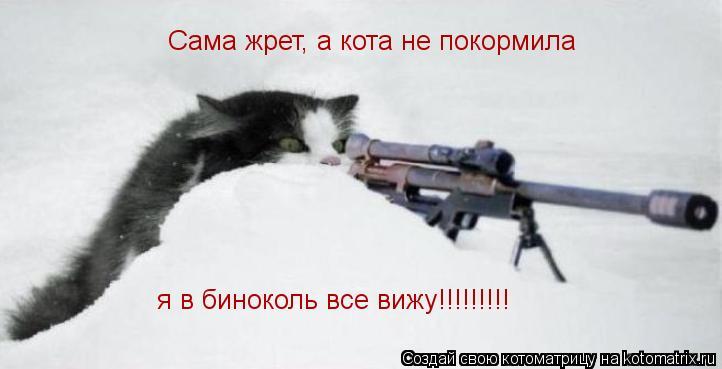 Котоматрица: Сама жрет, а кота не покормила я в биноколь все вижу!!!!!!!!!