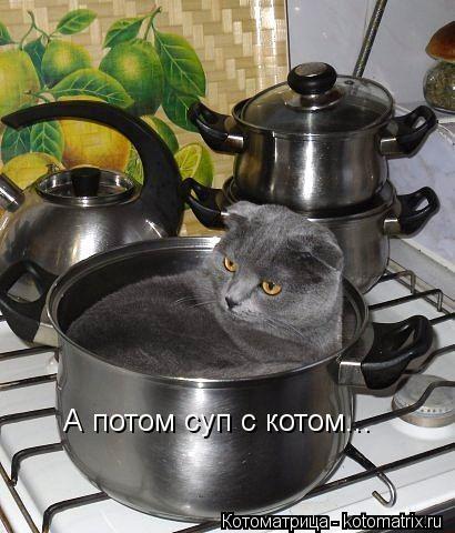 Котоматрица: А потом суп с котом...