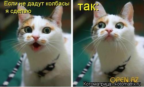 Котоматрица: Если не дадут колбасы я сделаю  так: