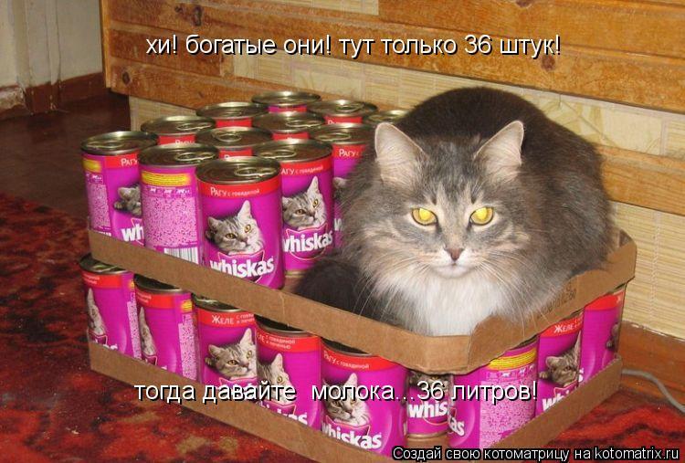Котоматрица: хи! богатые они! тут только 36 штук! тогда давайте  молока...36 литров!