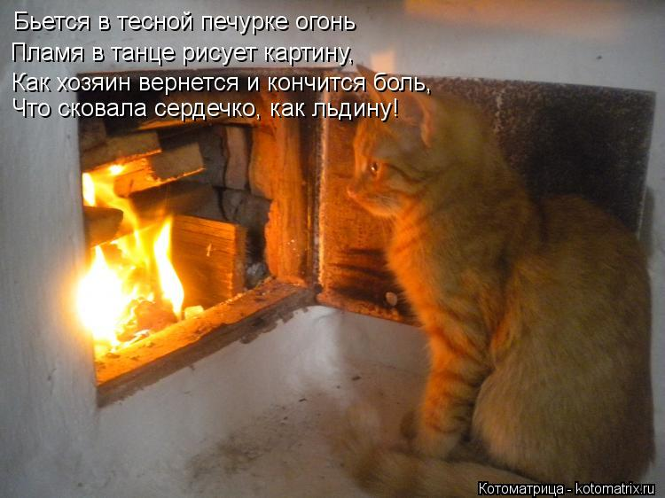 Котоматрица: Бьется в тесной печурке огонь Пламя в танце рисует картину, Как хозяин вернется и кончится боль, Что сковала сердечко, как льдину!