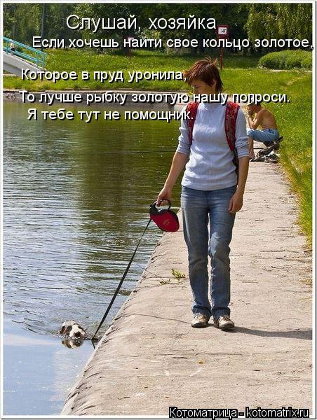Котоматрица: Слушай, хозяйка Если хочешь найти свое кольцо золотое, Которое в пруд уронила, То лучше рыбку золотую нашу попроси. Я тебе тут не помощник.