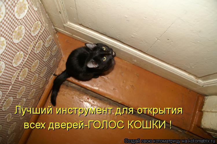 Котоматрица: Лучший инструмент для открытия всех дверей-ГОЛОС КОШКИ !