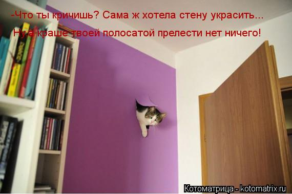 Котоматрица: -Что ты кричишь? Сама ж хотела стену украсить... Ну,а краше твоей полосатой прелести нет ничего!