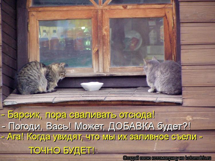 Котоматрица: - Барсик, пора сваливать отсюда! - Погоди, Вась! Может, ДОБАВКА будет?! - Ага! Когда увидят, что мы их заливное съели - ТОЧНО БУДЕТ!