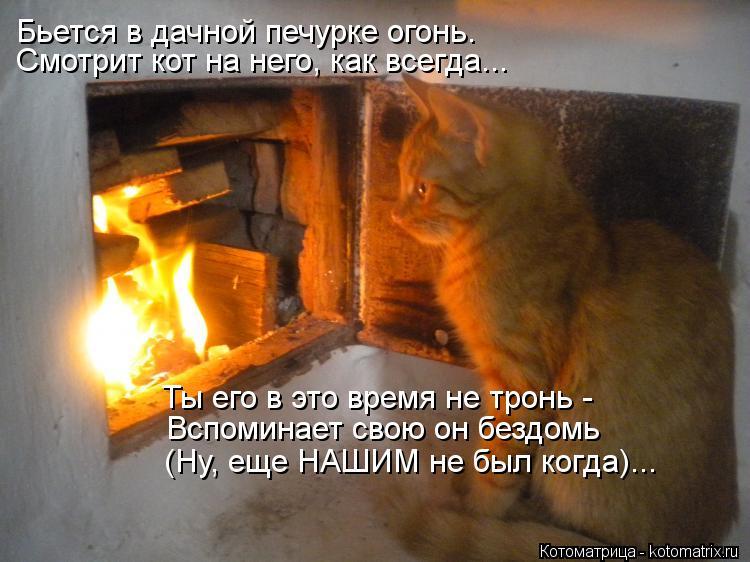 Котоматрица: Смотрит кот на него, как всегда... Ты его в это время не тронь -  Вспоминает свою он бездомь Бьется в дачной печурке огонь. (Ну, еще НАШИМ не был