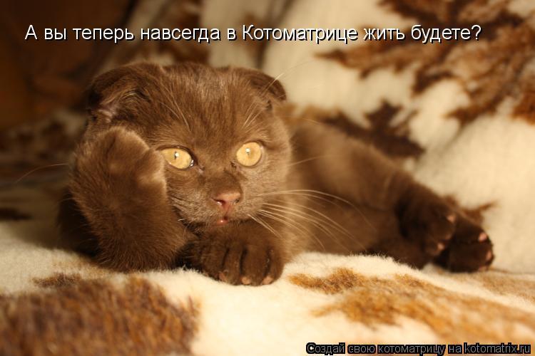 Фото воласатые подмышки мам 24 фотография