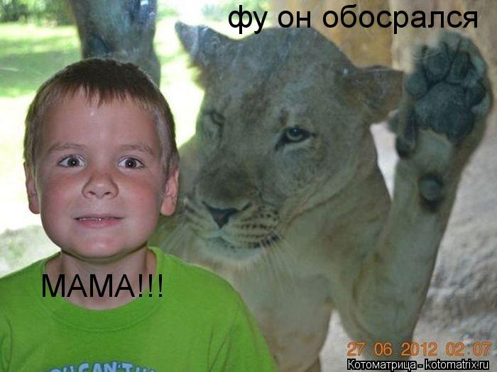 Котоматрица: фу он обосрался МАМА!!!