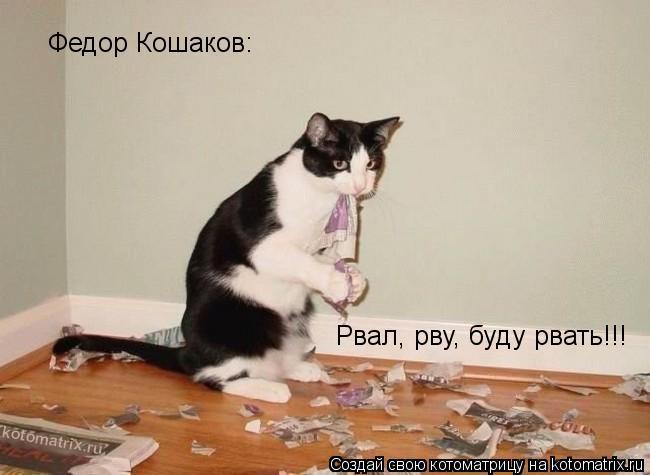 Котоматрица: Рвал, рву, буду рвать!!! Федор Кошаков: