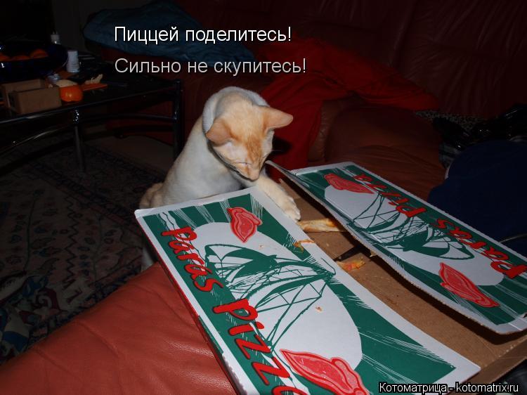 Котоматрица: Пиццей поделитесь! Сильно не скупитесь!