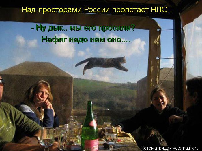 Котоматрица: Над просторами России пролетает НЛО..  - Ну дык.. мы его просили?  Нафиг надо нам оно....