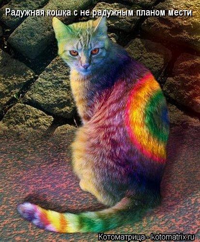 Котоматрица: Радужная кошка с не радужным планом мести