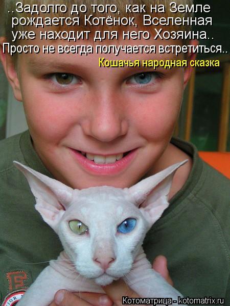 Котоматрица: ..Задолго до того, как на Земле рождается Котёнок, Вселенная уже находит для него Хозяина.. Просто не всегда получается встретиться.. Кошачья