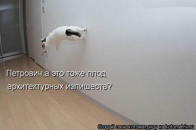 Котоматрица: Петрович,а это тоже плод архитектурных излишеств?