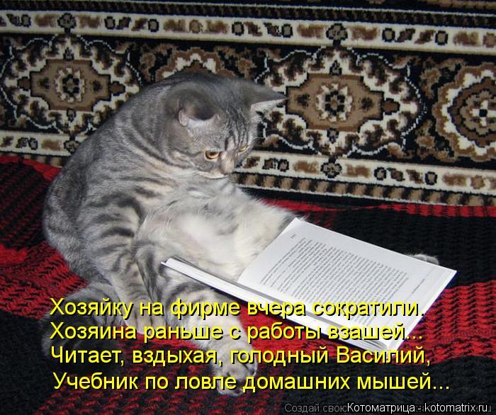 Котоматрица: Хозяйку на фирме вчера сократили.  Хозяина раньше с работы взашей... Читает, вздыхая, голодный Василий, Учебник по ловле домашних мышей...