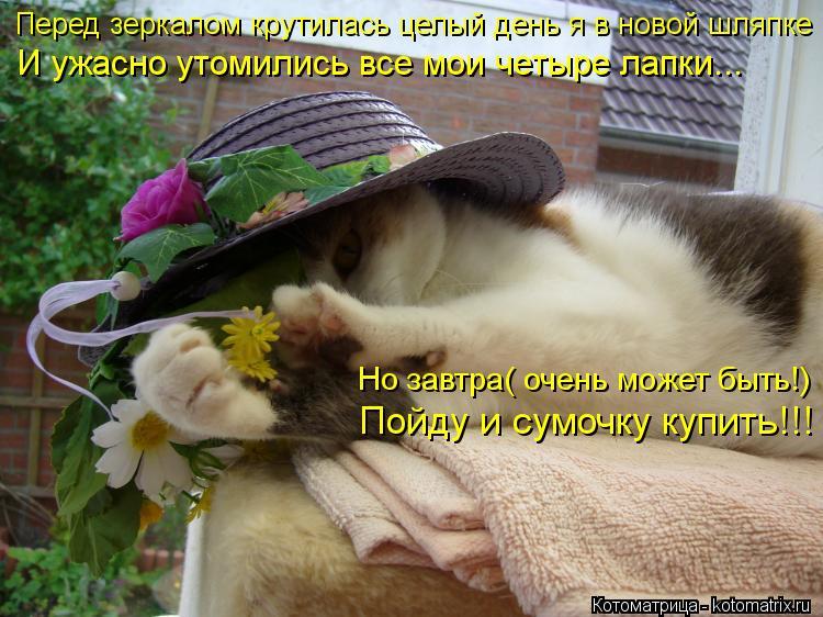 Котоматрица: Перед зеркалом крутилась целый день я в новой шляпке И ужасно утомились все мои четыре лапки... Но завтра( очень может быть!) Пойду и сумочку