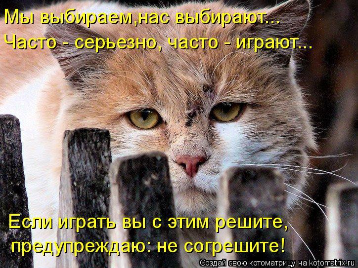 Котоматрица: Мы выбираем,нас выбирают... Часто - серьезно, часто - играют... Если играть вы с этим решите,  предупреждаю: не согрешите!