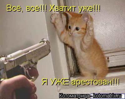 Котоматрица: Всё, всё!!! Хватит уже!!! Я УЖЕ арестован!!!