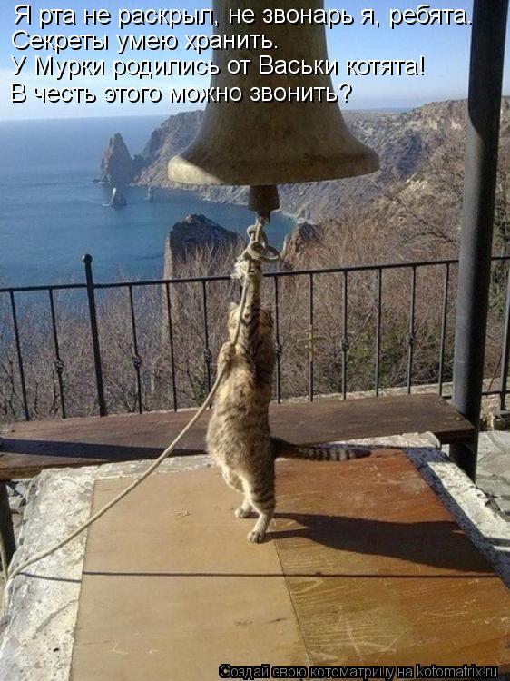 Котоматрица: Я рта не раскрыл, не звонарь я, ребята.   Секреты умею хранить.  У Мурки родились от Васьки котята!  В честь этого можно звонить?