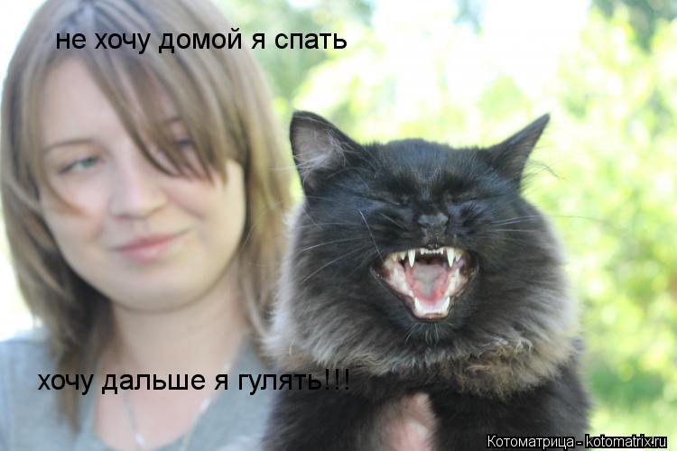 Котоматрица: не хочу домой я спать хочу дальше я гулять!!!