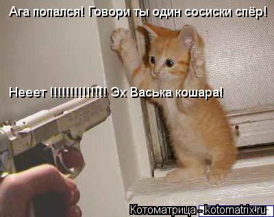 Котоматрица: Ага попался! Говори ты один сосиски спёр! Нееет !!!!!!!!!!!!!! Эх Васька кошара!