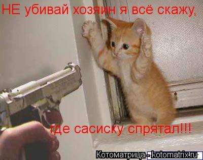 Котоматрица: где сасиску спрятал!!! НЕ убивай хозяин я всё скажу,