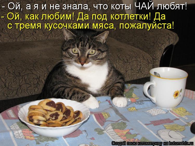 http://kotomatrix.ru/images/lolz/2012/07/01/kotomatritsa_x.jpg