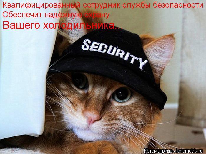 Котоматрица: Квалифицированный сотрудник службы безопасности Обеспечит надёжную охрану  Вашего холодильника...