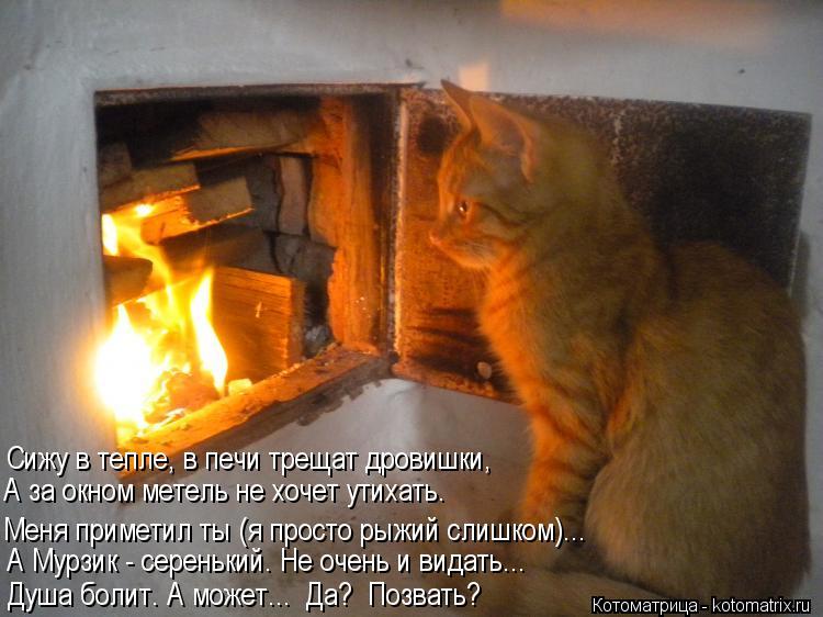 Котоматрица: Сижу в тепле, в печи трещат дровишки,  Меня приметил ты (я просто рыжий слишком)... Душа болит. А может...  Да?  Позвать?  А Мурзик - серенький. Не о
