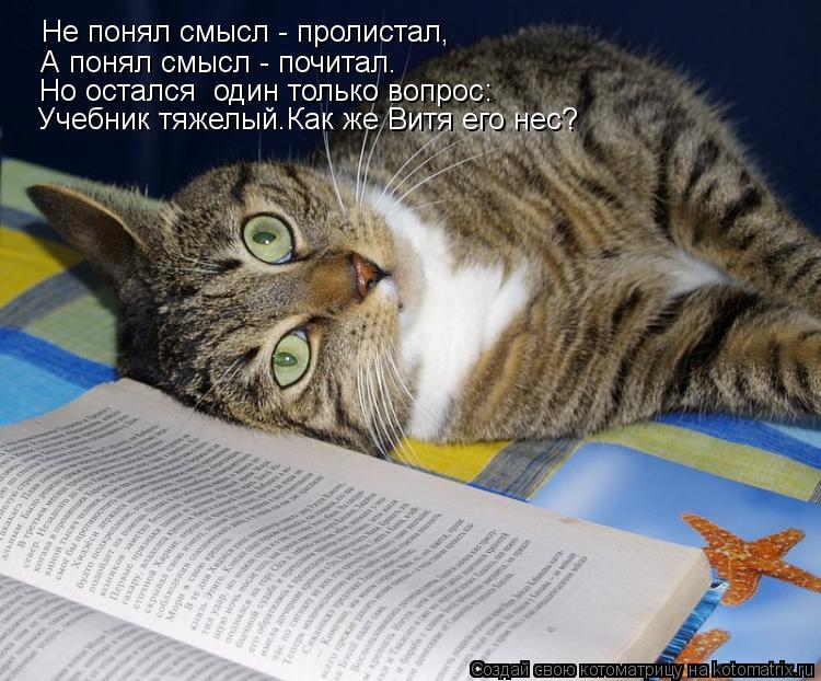 Котоматрица: Не понял смысл - пролистал, А понял смысл - почитал. Но остался  один только вопрос: Учебник тяжелый.Как же Витя его нес?