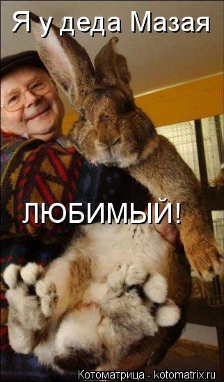 Котоматрица: Я у деда Мазая ЛЮБИМЫЙ!