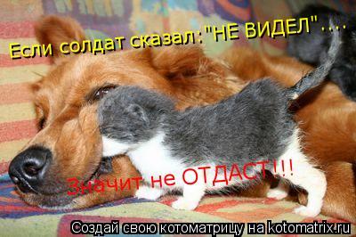 """Котоматрица: Значит не ОТДАСТ!!! Если солдат сказал:""""НЕ ВИДЕЛ""""...."""