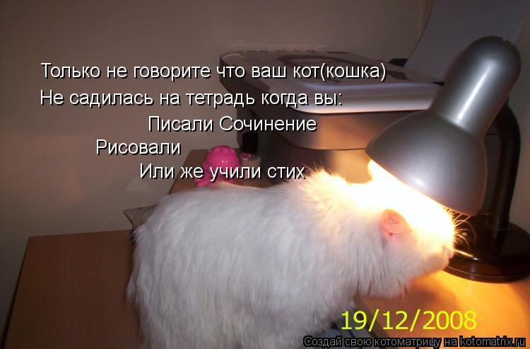 Котоматрица: Только не говорите что ваш кот(кошка) Не садилась на тетрадь когда вы: Писали Сочинение Рисовали Или же учили стих
