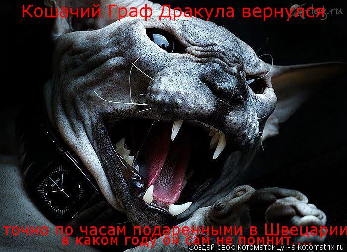 Котоматрица: Кошачий Граф Дракула вернулся  точно по часам подаренными в Швецарии в каком году он сам не помнит....