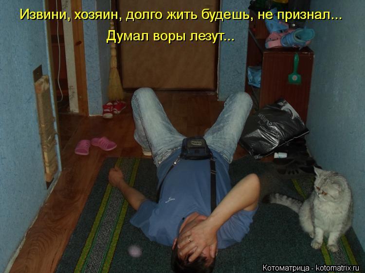 Котоматрица: Извини, хозяин, долго жить будешь, не признал... Извини, хозяин, долго жить будешь, не признал... Думал воры лезут...