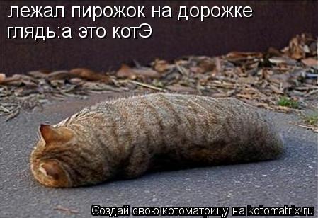Котоматрица: лежал пирожок на дорожке глядь:а это котЭ